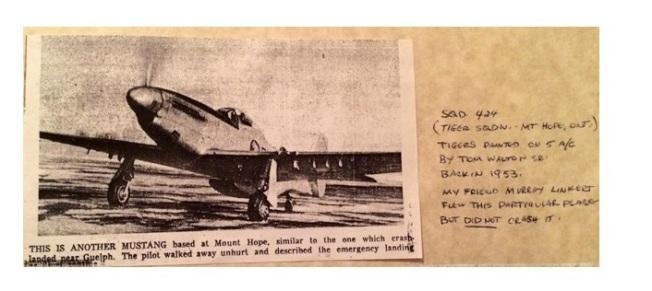 Copie de Tiger Story 9 - Copie (11)