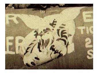 Tiger Story 5 - Copie